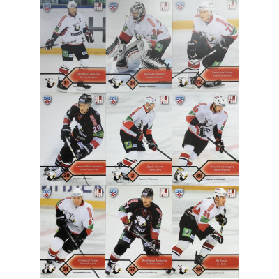 ТРАКТОР (Челябинск) комплект 18 карточек 2012-13 Sereal КХЛ 5 сезон.